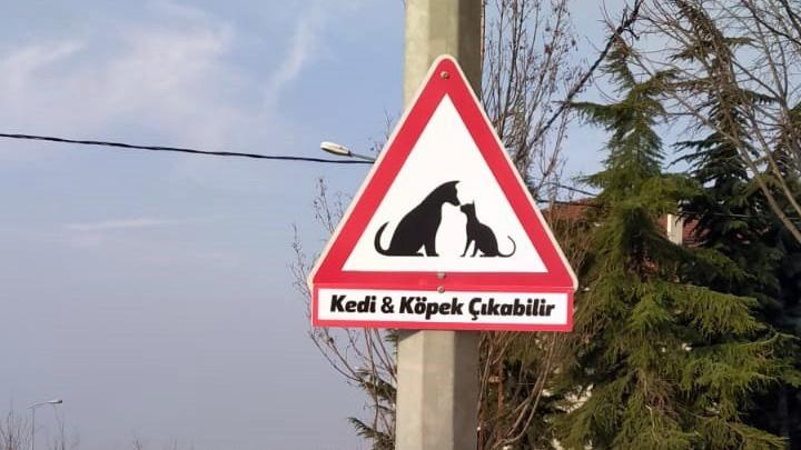 Büyükçekmece'ye sokak hayvanları için uyarı levhası