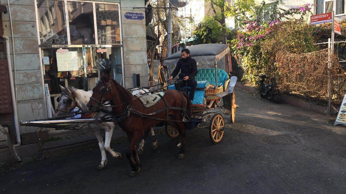 Kriz çıkaran fayton ve atları İstanbul Büyükşehir Belediyesi satın aldı