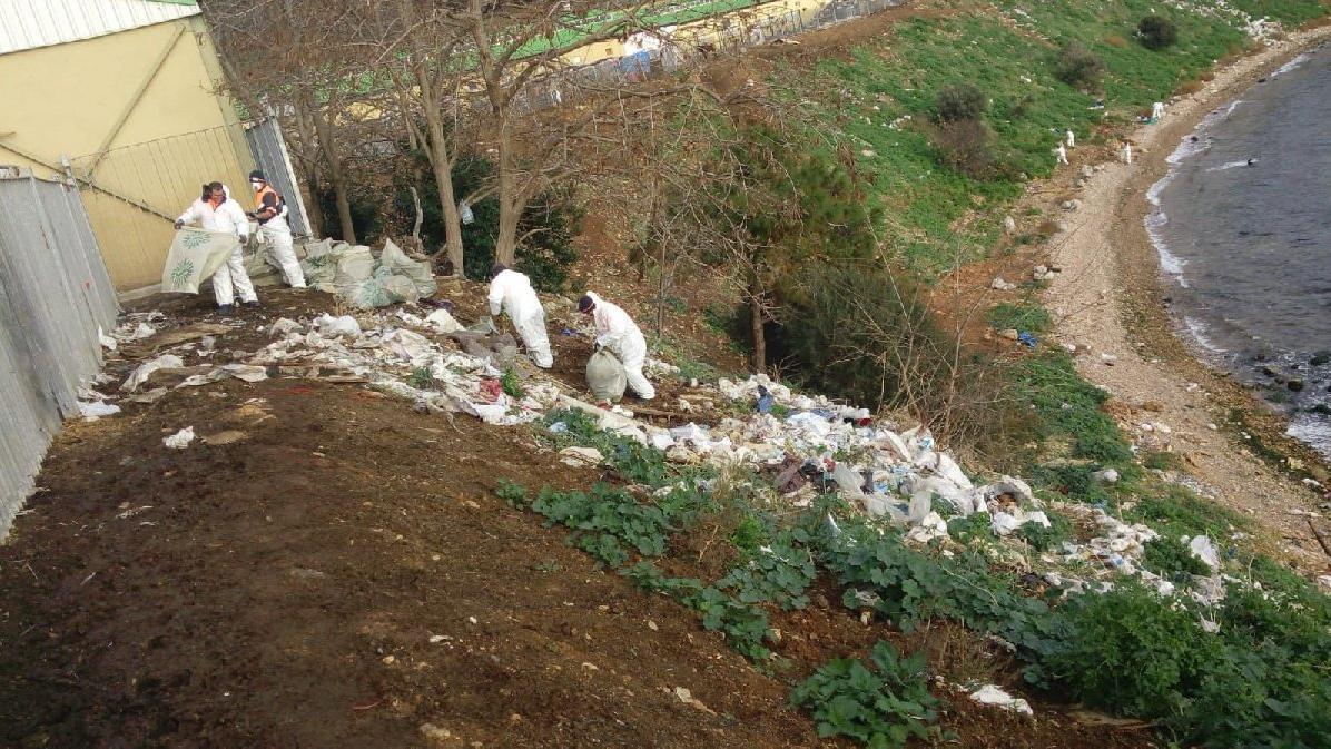 Adalar'da fayton temizliği: 25 ton atık çıktı!