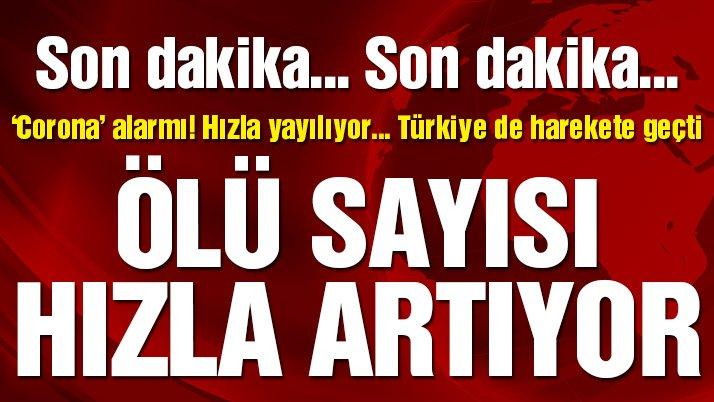 Son dakika… 'Corona' alarmı! Virüs hızla yayılıyor, ölü sayısı artıyor… Türkiye harekete geçti