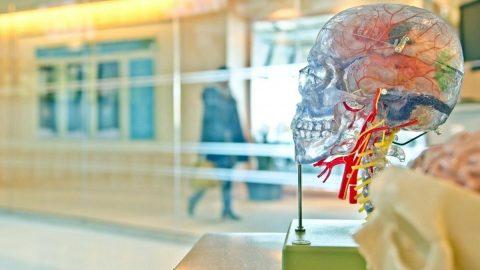 Prof. Dr. Uğur Batı: Düzensiz gelir beyin sağlığını olumsuz etkiliyor