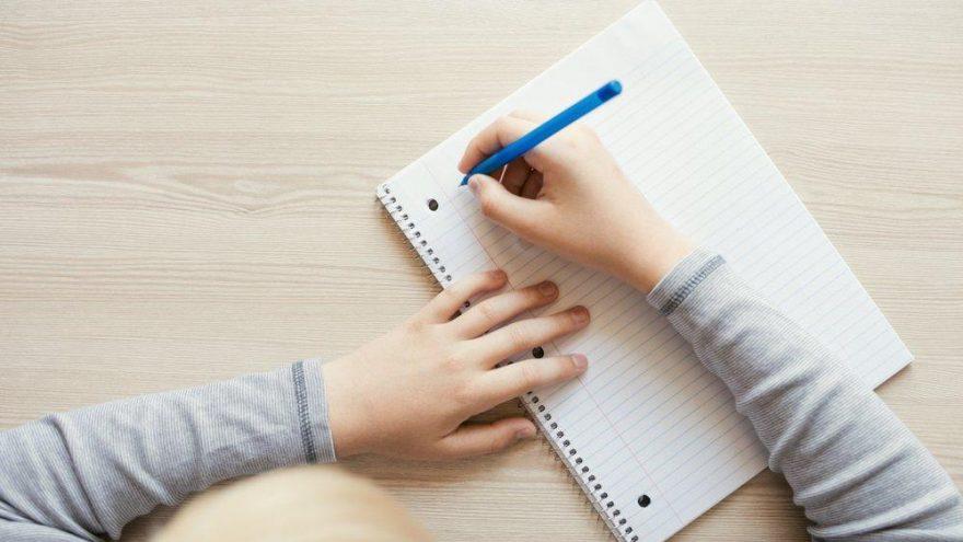 Teşvik nasıl yazılır? TDK güncel yazım kılavuzuna göre teşvik mi, teşfik mi?