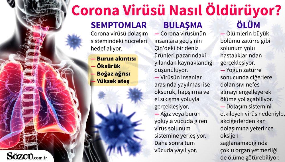 Corona ve benzeri virüslerden korunmak için bu önlemleri alın' - Sağlık son  dakika haberler