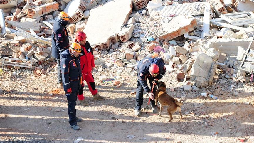 Depremin isimsiz kahramanları; kurtarma köpekleri