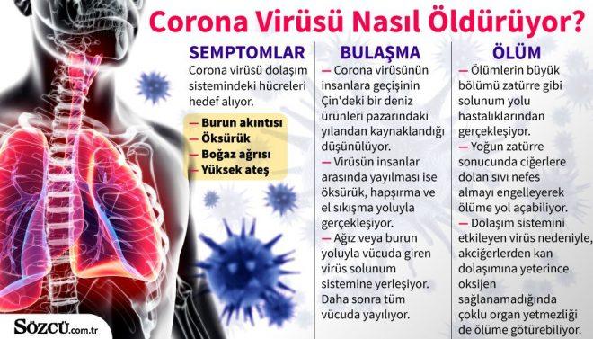 https://i.sozcu.com.tr/wp-content/uploads/2020/01/31/24ocakvirusgraf-1-660x377.jpg
