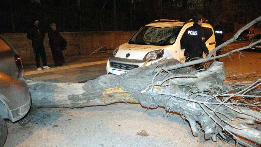 Başkent'te çatılar uçtu, ağaçlar devrildi