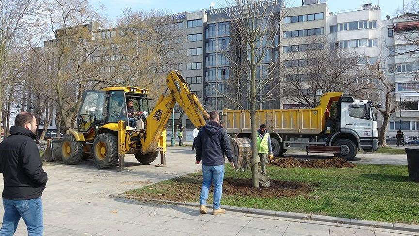 Gezi Parkı'na 150 ağaç dikiliyor!