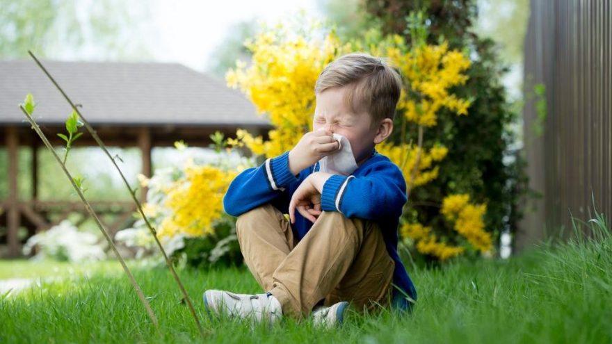 Çocuklarda alerji belirtileri nelerdir?