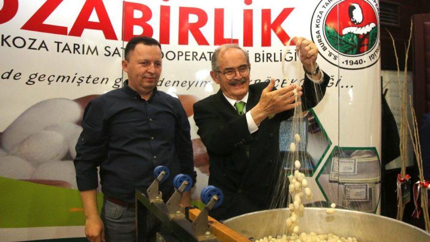 Eskişehir'de vatandaşlara 70 bin dut fidanı dağıtıldı