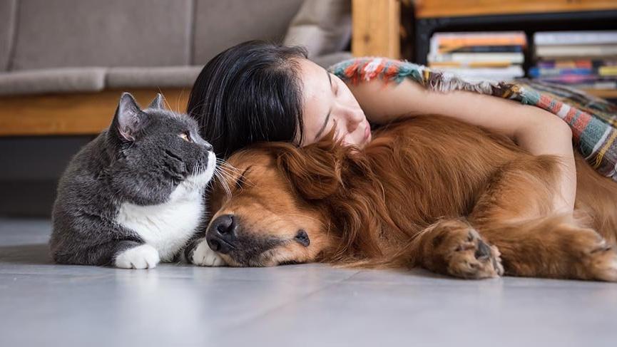 Evcil hayvanı olanlar corona virüsünden korkmasın
