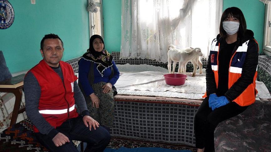 Afyonkarahisar'da gülümseten yanlış anlama! Kuzuları torun olarak anlamışlar