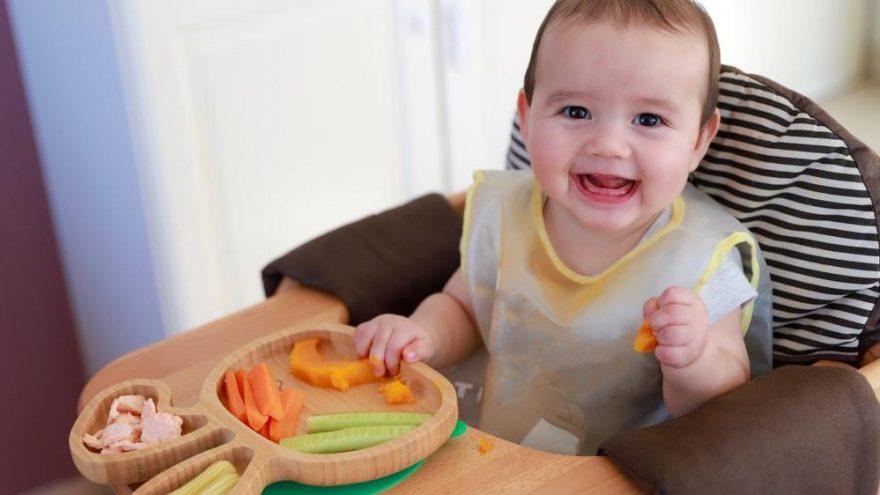 9 aylık bebek kahvaltı tarifleri…