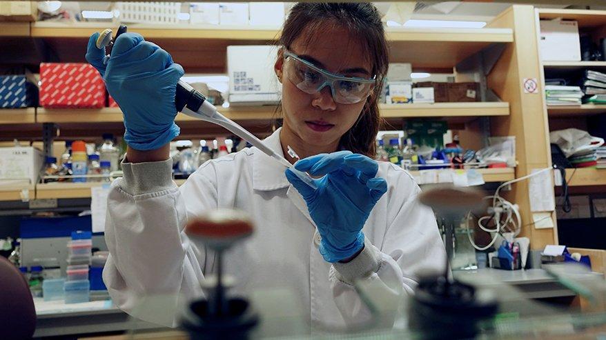 Corona virüsünün zaafını buldular: Corona aşısı yolda