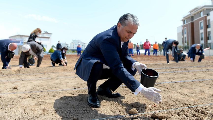 Antalyalılar kıtlık korkusuyla mısır ekti