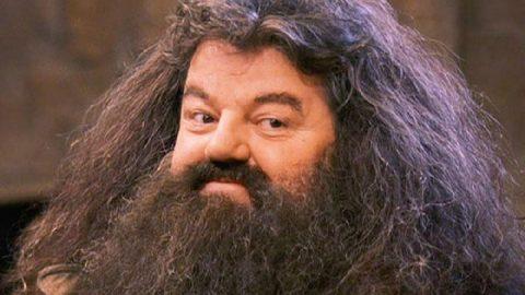 Harry Potter hayranlarına müjde! Hagrid ve Voldemort geri dönüyor