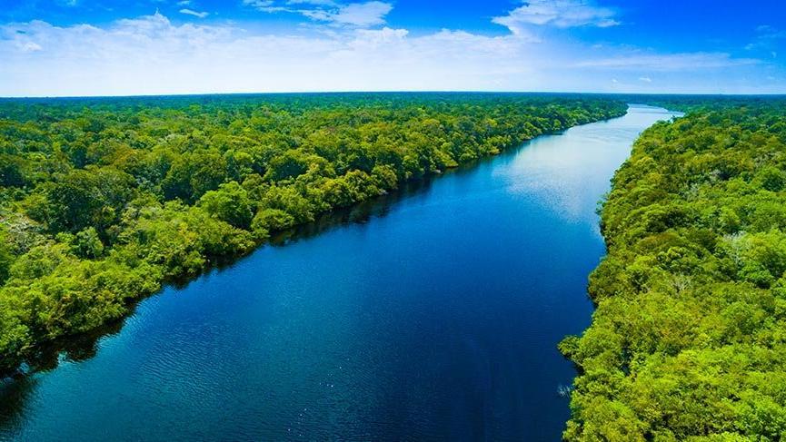 Amazon Ormanları alarm veriyor