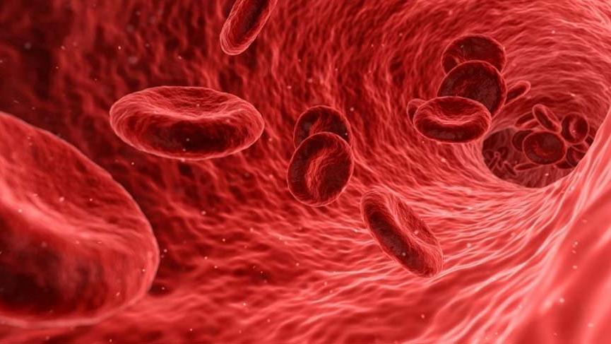 Kalp-Damar Cerrahisi Uzmanı Prof. Dr. Ahmet Akgül anlattı: Covid-19 damarı da vuruyor