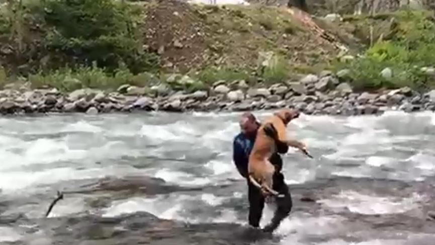 Fırtına Deresi'nde mahsur kalan köpek kurtarıldı