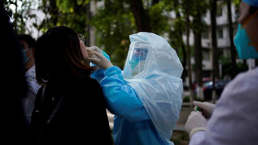 Corona virüsüyle ilgili kritik rapor: Yüksek ihtimalle olası değil