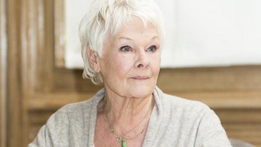 Judi Dench en yaşlı kapak yıldızı oldu, tarihe adını yazdırdı