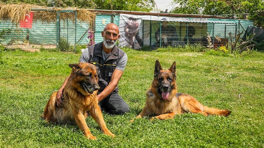 'Köpekler, corona virüslü hastayı tespit için eğitilebilir'