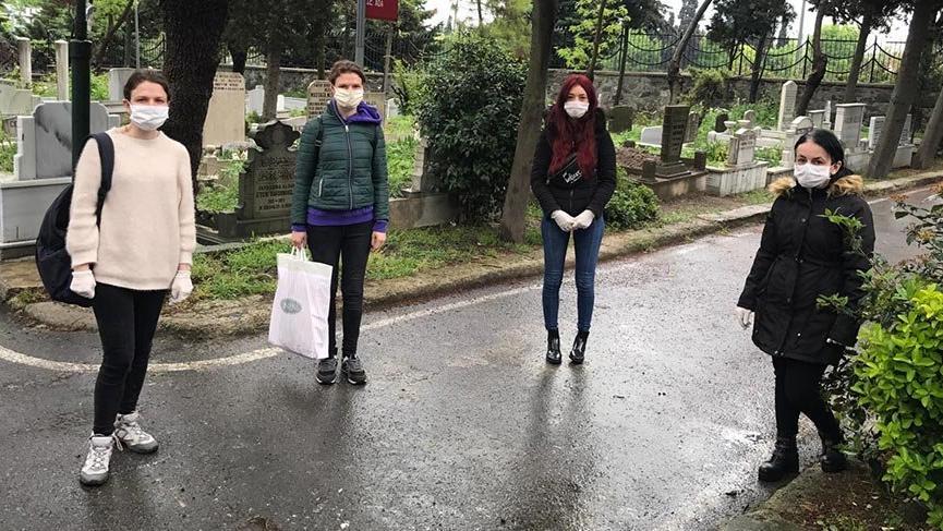 İstanbul'un orta yerinde 20'den fazla kedi katledildi