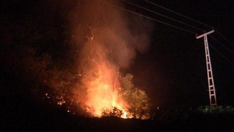 Rize'deki orman yangını 6 saatte söndürüldü!