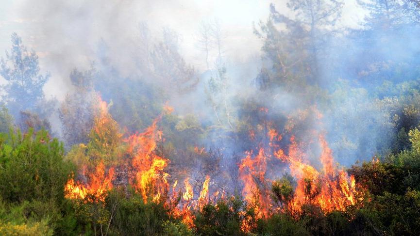 Bodrum yangınında sabotaj şüphesi