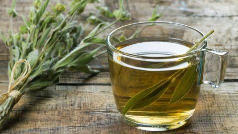 Ada çayının içinde hangi vitaminler var? Ada çayının faydaları…