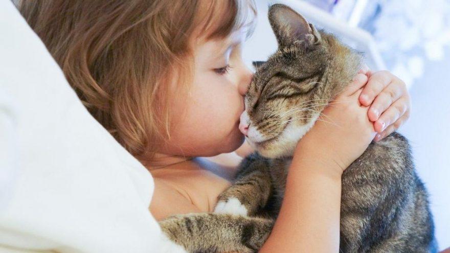 Evde evcil hayvan beslemek çocuğa zarar verir mi?