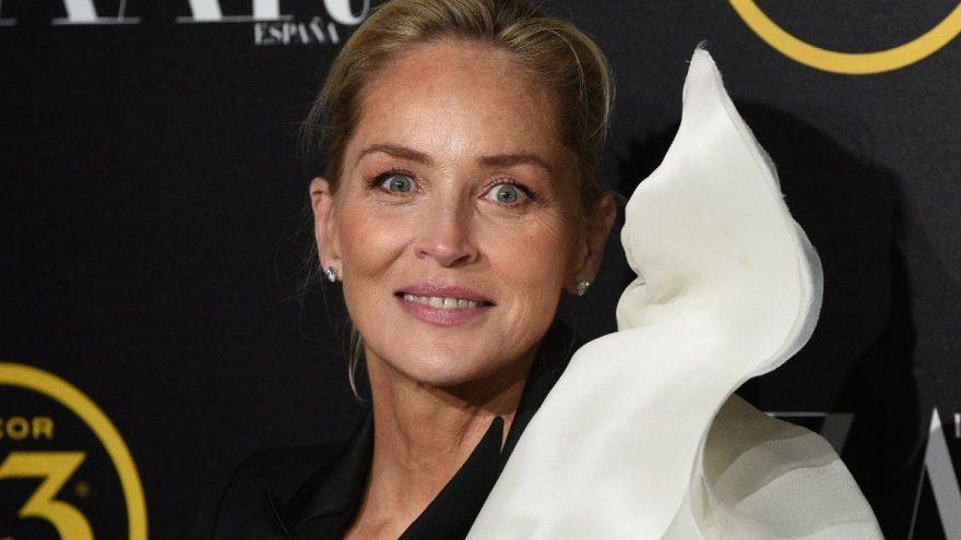 Sharon Stone'dan protestoculara uyarı: İç savaşa ihtiyacımız yok