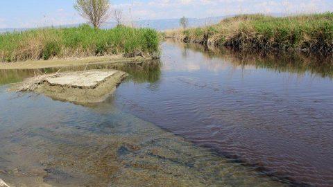Büyük Menderes nehri can çekişiyor