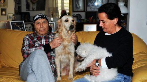 Fatma Girik'in köpeği Nazlı'ya araba çarptı, hayatını kaybetti