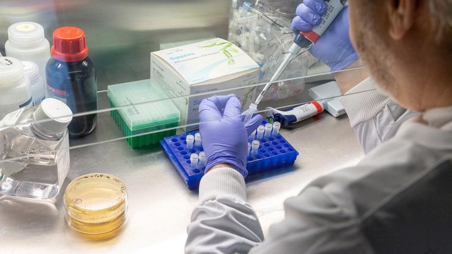 Corona virüsünde umut veren açıklama: Aşıya gerek yok