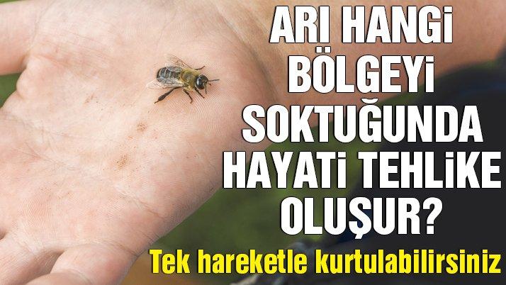 Arı sokmalarında bu uygulamalara dikkat