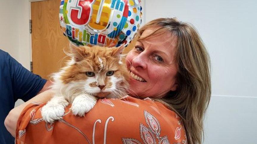 Dünyanın en yaşlı kedisi Rubble 31 yaşında öldü