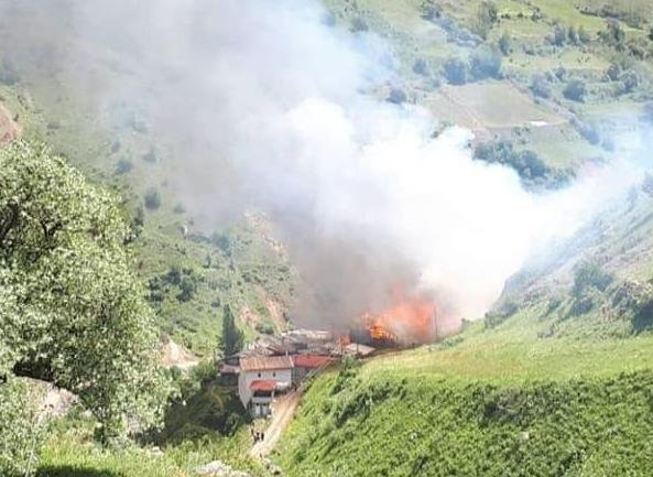 Artvin'de korkutan yangın: Birçok evi de etkilendi