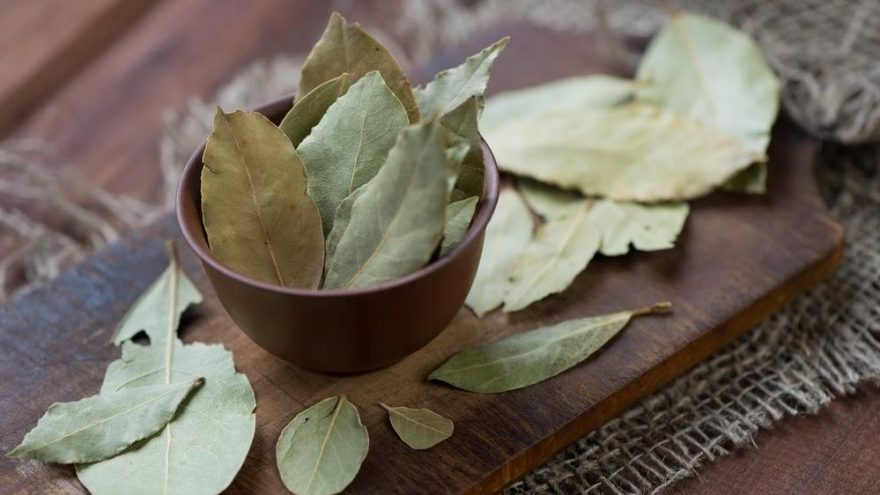 Defne yaprağının cilde ve saça faydaları nelerdir?