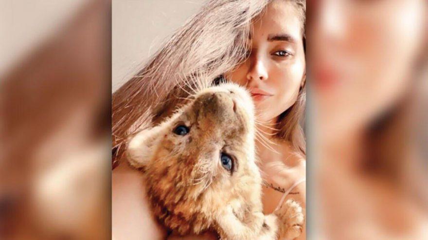 İranlı model Qazal Yadegari'nin rezidansta beslediği yavru aslan ve piton yılanı koruma altına alındı