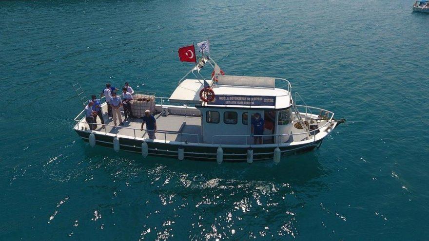 Muğla'da denizden 420 bin 288 poşet katı atık toplandı