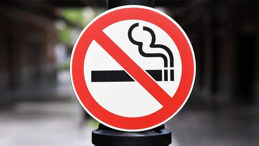 'Türkiye tütün sorununu çözmüyor, artırıyor!'