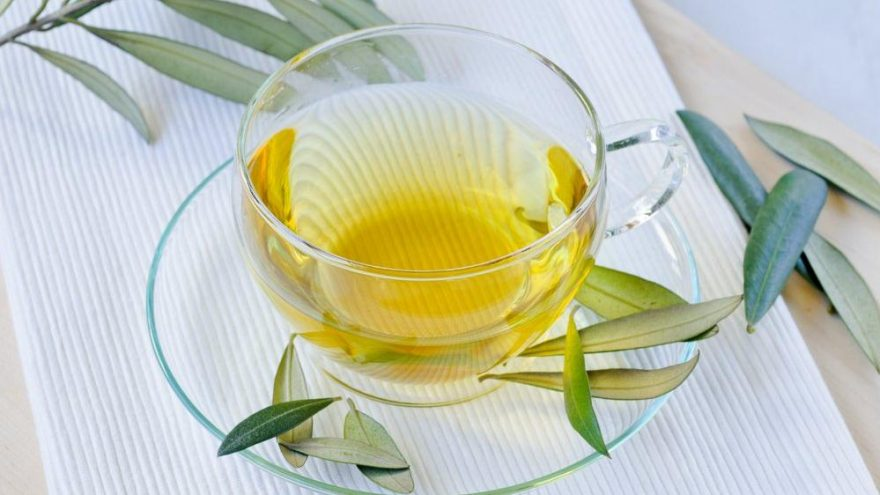 Zeytin yaprağı çayı faydaları nelerdir? Zeytin yaprağı çayı neye iyi geliyor?