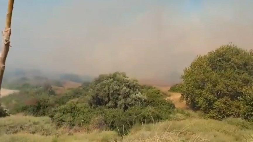 İzmir'de iki günde dört yangın! Orman Genel Müdürlüğü uyardı