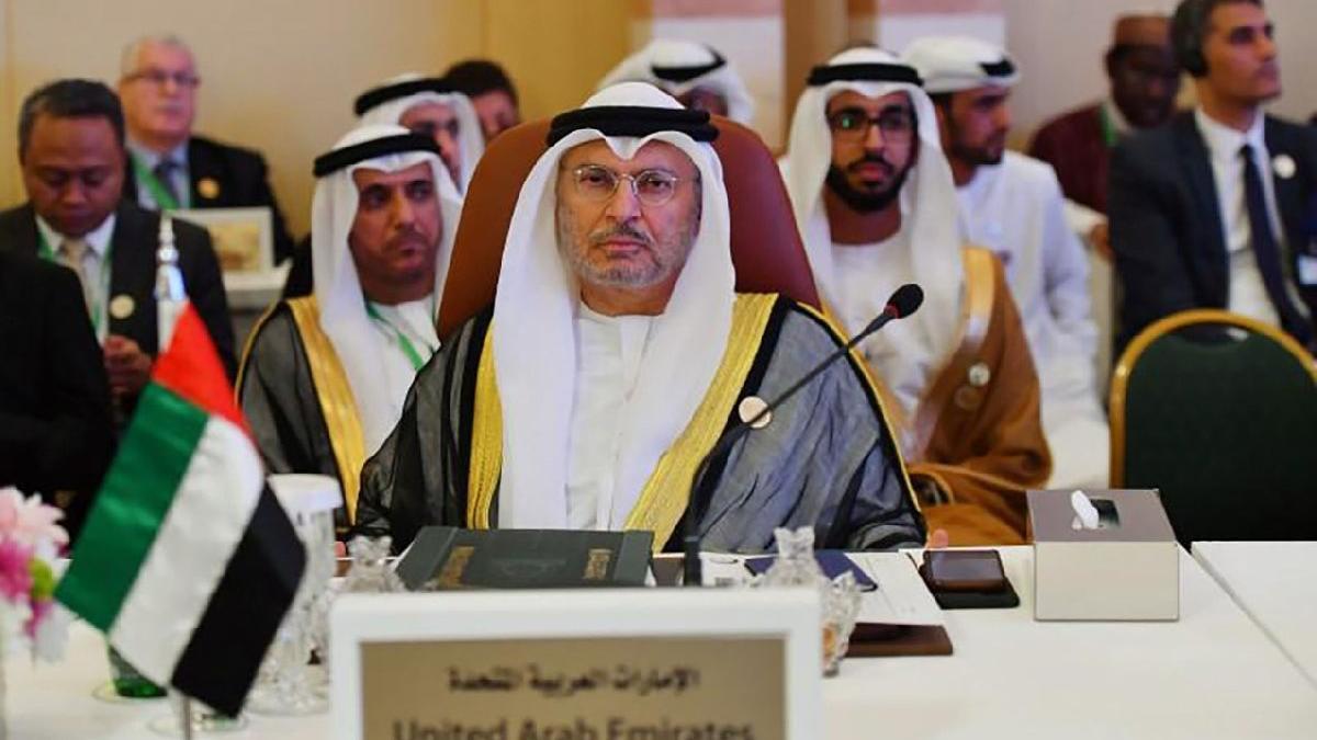 Birleşik Arap Emirlikleri'nden skandal Türkiye açıklaması: Karışmayı bırakın