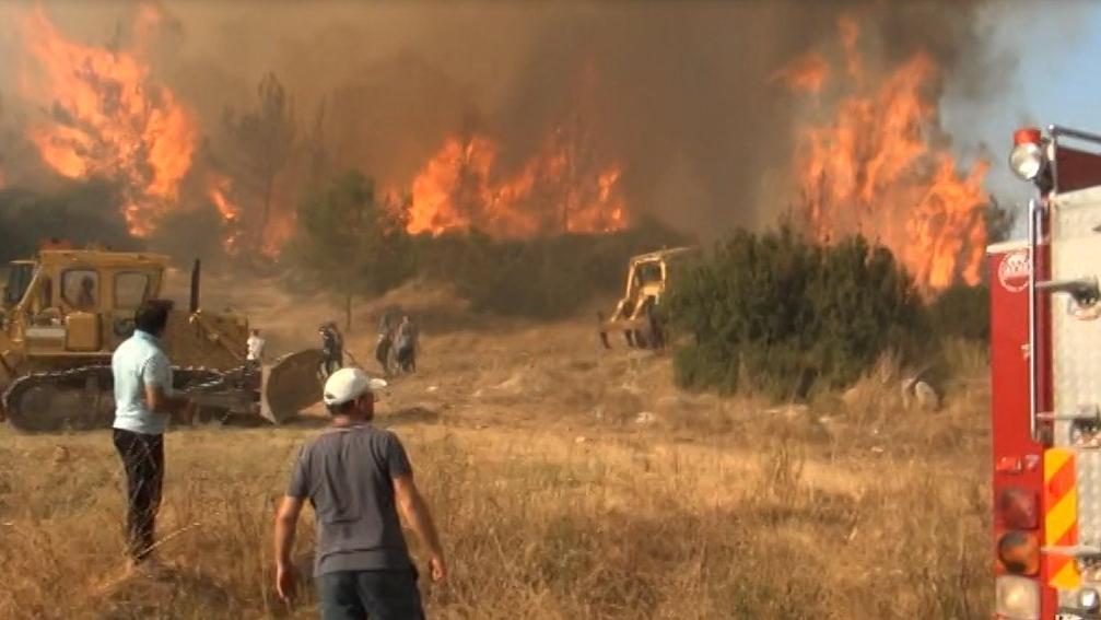 Bakan Pakdemirli açıkladı: 11 ilde 14 orman yangını!