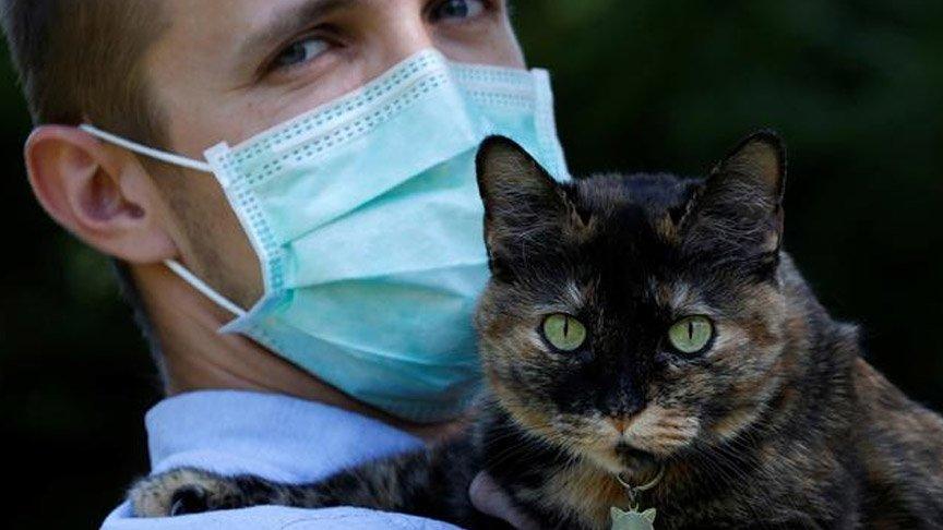 Kritik araştırma: İnsanlar coronayı kedi ve köpeklere bulaştırıyor!