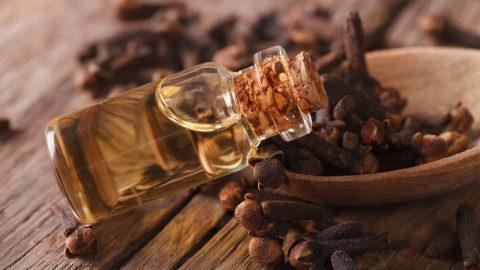 Karanfil yağı faydaları nelerdir? Karanfil yağı neye iyi geliyor?