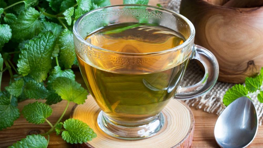 Melisa çayının faydaları nelerdir? Melisa çayı neye iyi geliyor?