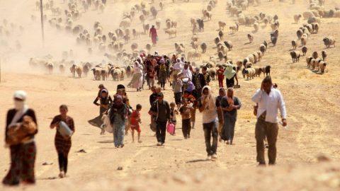 Uzmanlardan korkutan rapor: 1 milyar insan yerinden olacak!