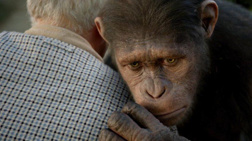 Maymunlar Cehennemi: Başlangıç filminin konusu ve oyuncu kadrosu…